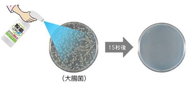 微酸性電解水を噴霧して15秒後に除去されている大腸菌の試験写真+イラスト
