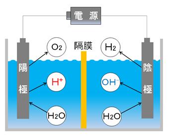 槽を隔膜で2つに仕切り水を電気分解する絵