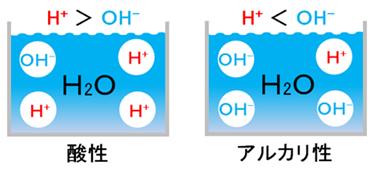 酸性とアルカリ性のイオンバランス図