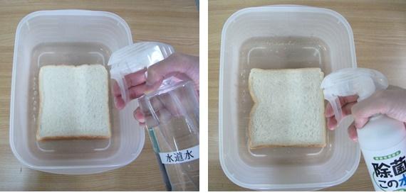 食パンに水道水と微酸性電解水を吹きつけ
