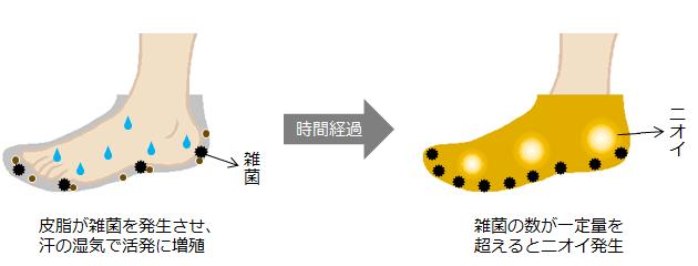 皮脂が雑菌とニオイを発生させる絵